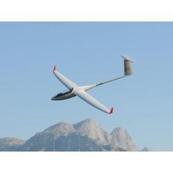 Glider Diana 2 all composite - Carbon D-box - 3,75m - Royal Model