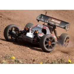 Car Buggy HPI Trophy 3.5 RTR